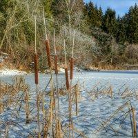 На замёрзшем озере :: Милешкин Владимир Алексеевич