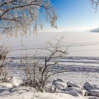 Снег и туман :: Анатолий Иргл