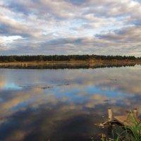 Золотоосенние облака :: Лариса Чудиновских