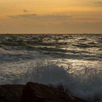 Закат у моря :: Игорь Гарагуля