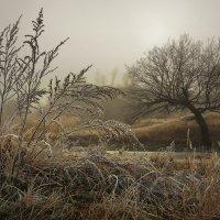 Там за туманом :: Cергей Дмитриев