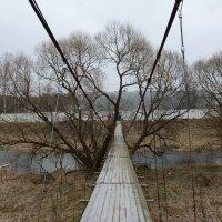 Подвесной мост. :: Oleg4618 Шутченко
