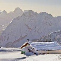 Альпийская Зима. :: Артем