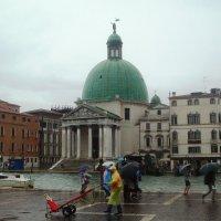 Дождь в Венеции :: Плюшевая Пальма