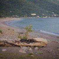 черное море :: Алексей Дроздов