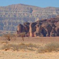 В каньоне :: Николай Танаев