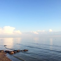 Финский залив :: Tatiana MissTi