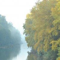 Река Псекупс в утреннем  тумане :: Георгий Калиберда