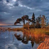 На берегу Канозера :: Валерий Толмачев