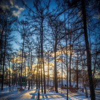 Неужели зима?! :: Игорь Герман