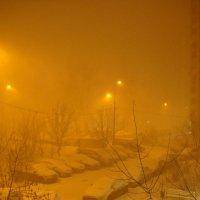 Снегопад заказывали? :: Андрей Лукьянов