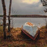 Озеро Даниковское.На отдыхе :: Валерий Талашов