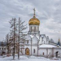 Саввино-Сторожевский монастырь :: Марина Назарова