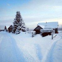 Замели снега деревню :: Николай Туркин