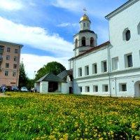 Вид на женский монастырь. :: Александр Атаулин