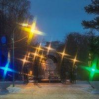 Вечерний парк :: Виталий