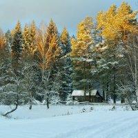 Золотой закат.. :: Алла Кочергина
