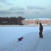 зимняя дама с собачкой :: Александра