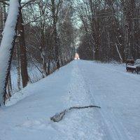 Снег в Кусково :: Александра