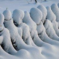 Замёрзшие инопланетяне :: Валерий Чепкасов