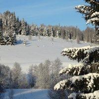 Мороз и солнце :: Валерий Чепкасов