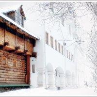 Снежное настроение) :: Ирина Князева