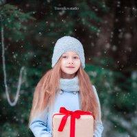 Портрет маленькой девочки с подарком :: Dmitry Travnikov