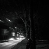 прогулка вечером... :: Батик Табуев