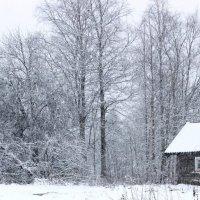 Зима в карельской деревне. :: Андрей Скорняков