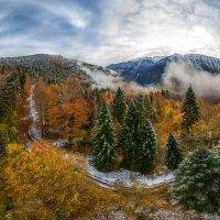 Осенне-зимний лес :: Фёдор. Лашков