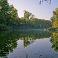 лесное озеро :: герасим свистоплясов