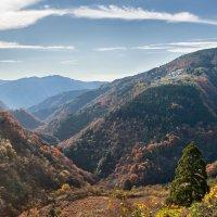 Деревенька в горах :: Nataliya Barinova