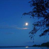 Ночной пейзаж. :: Юрий Шувалов