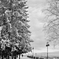 Зимние прогулки по набережной* :: Александр Архипкин