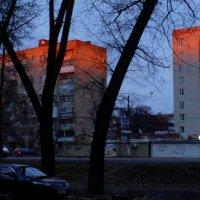 Декабрьские закаты ... :: Игорь Малахов