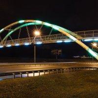 Пешеходный мост через МКАД :: Николай Н