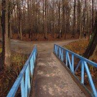 Зима похожая на осень :: Андрей Лукьянов