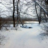 Первый снег :: Игорь Сикорский
