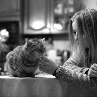 Человек и кошка :: Москалёв Пётр