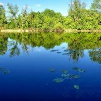 Старица реки Самара :: Денис Кораблёв