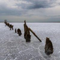 Соль земли :: Альберт Беляев