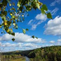 Осень :: Елена Скворцова