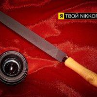 Концепция в стиле Nikon :: Александр Хайленко