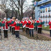 Новогодний оркестр. :: Геннадий Оробей