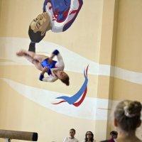 С кого рисуют историю гимнастики :: Александр Рябчиков