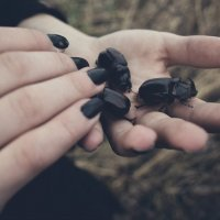 My little world :: Алёна Бадьина
