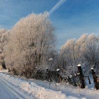 Зимой, у кривого забора :: Николай Белавин