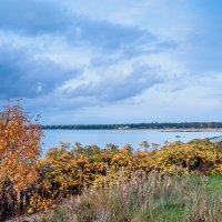 Финский залив :: Виталий