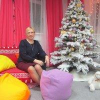 Про Новый год. :: Мила Бовкун
