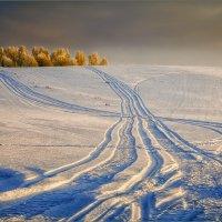 Про свет и следы на снегу... :: Александр Никитинский